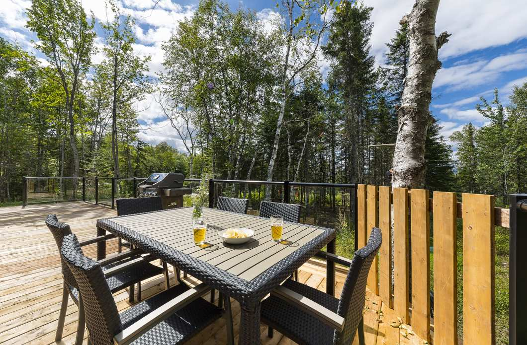 STU-3 - In the heart of nature in Charlevoix, close to Baie-St-Paul